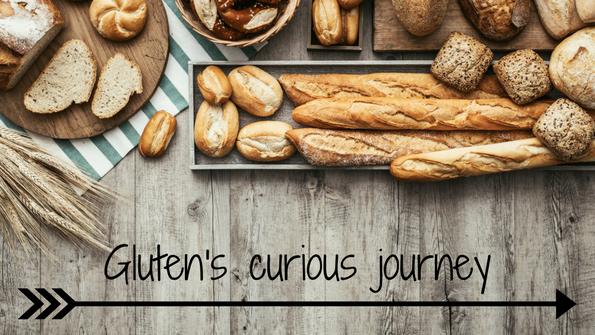 Gluten's curious journey: A history of gluten