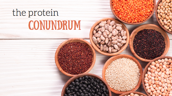5 ways to get more plant-based protein in your diet