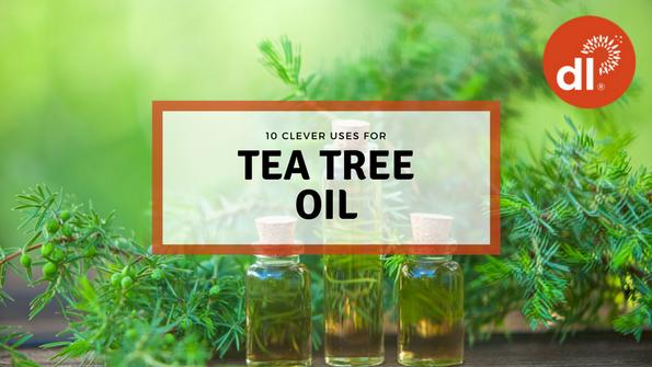10 genius uses for tea tree oil
